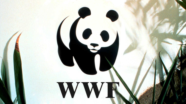 Logotipo del oso panda de WWF