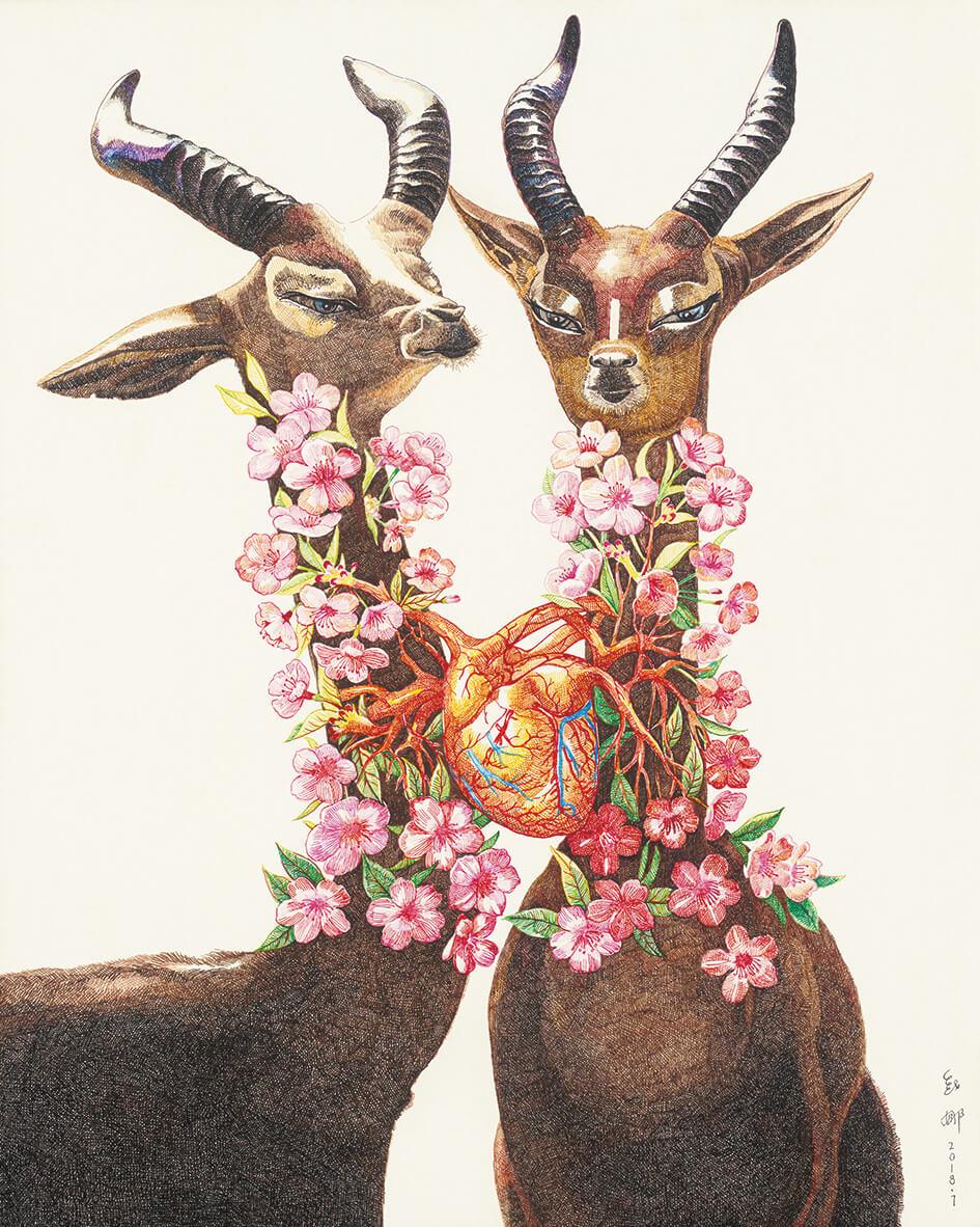 amor de animales zhao na