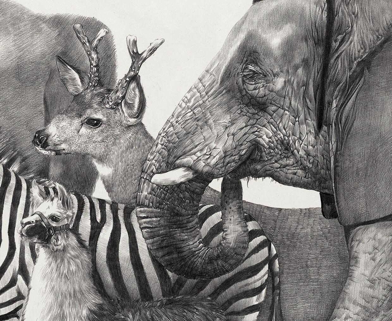 animales blanco y negro ilustracion zhao na
