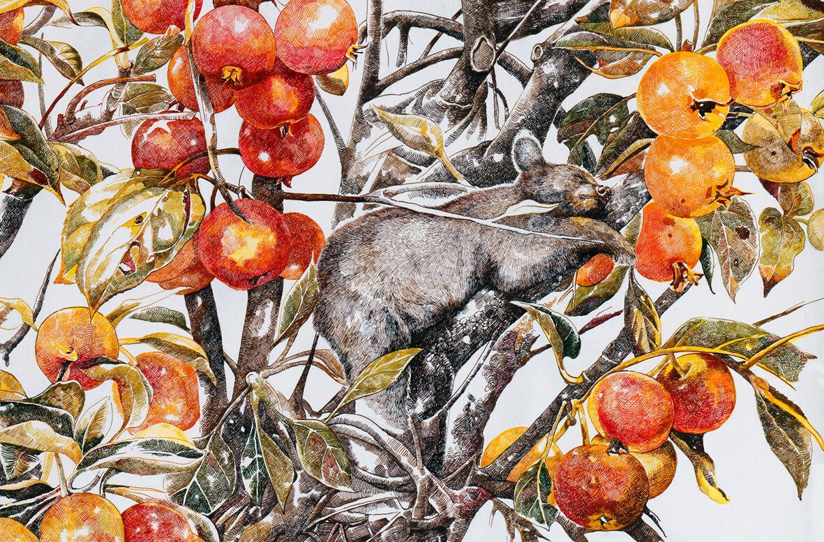 osito duerme en arbol con frutos Zhao Na