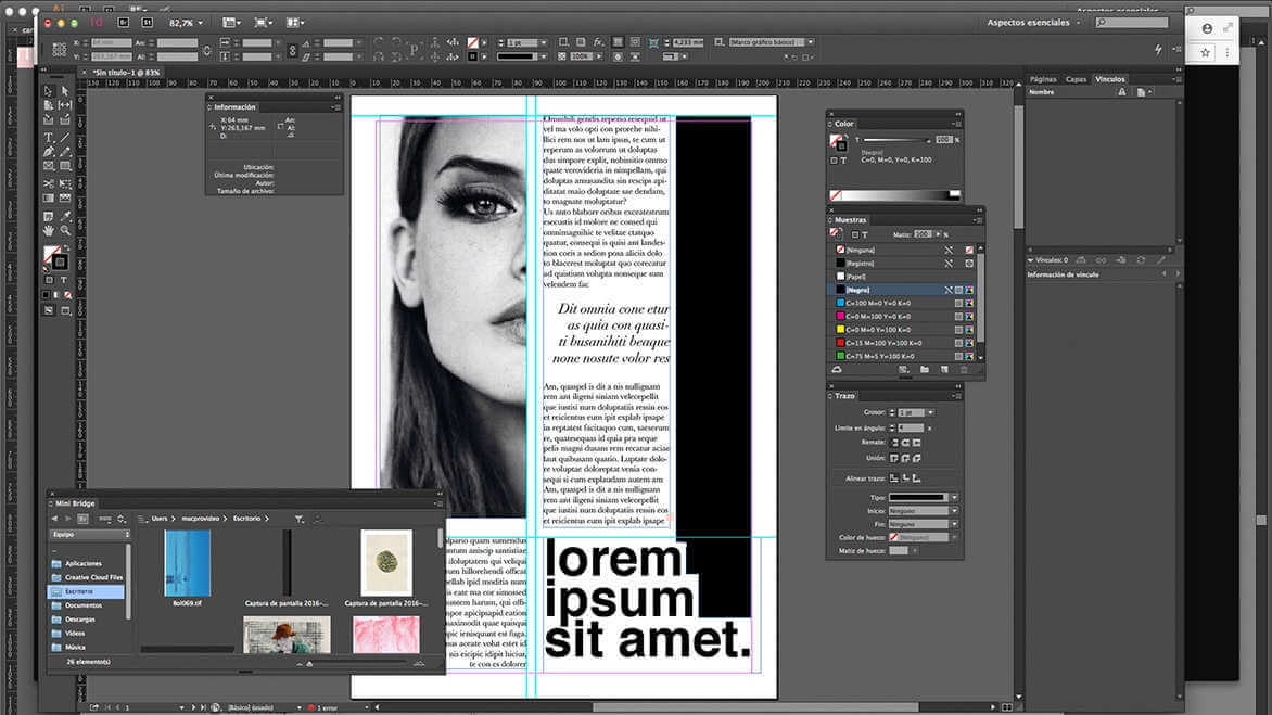 iNTERFACE DE ADOBE IN DESIGN