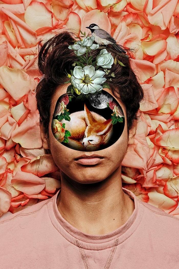 viviana pantoja collage mujeres