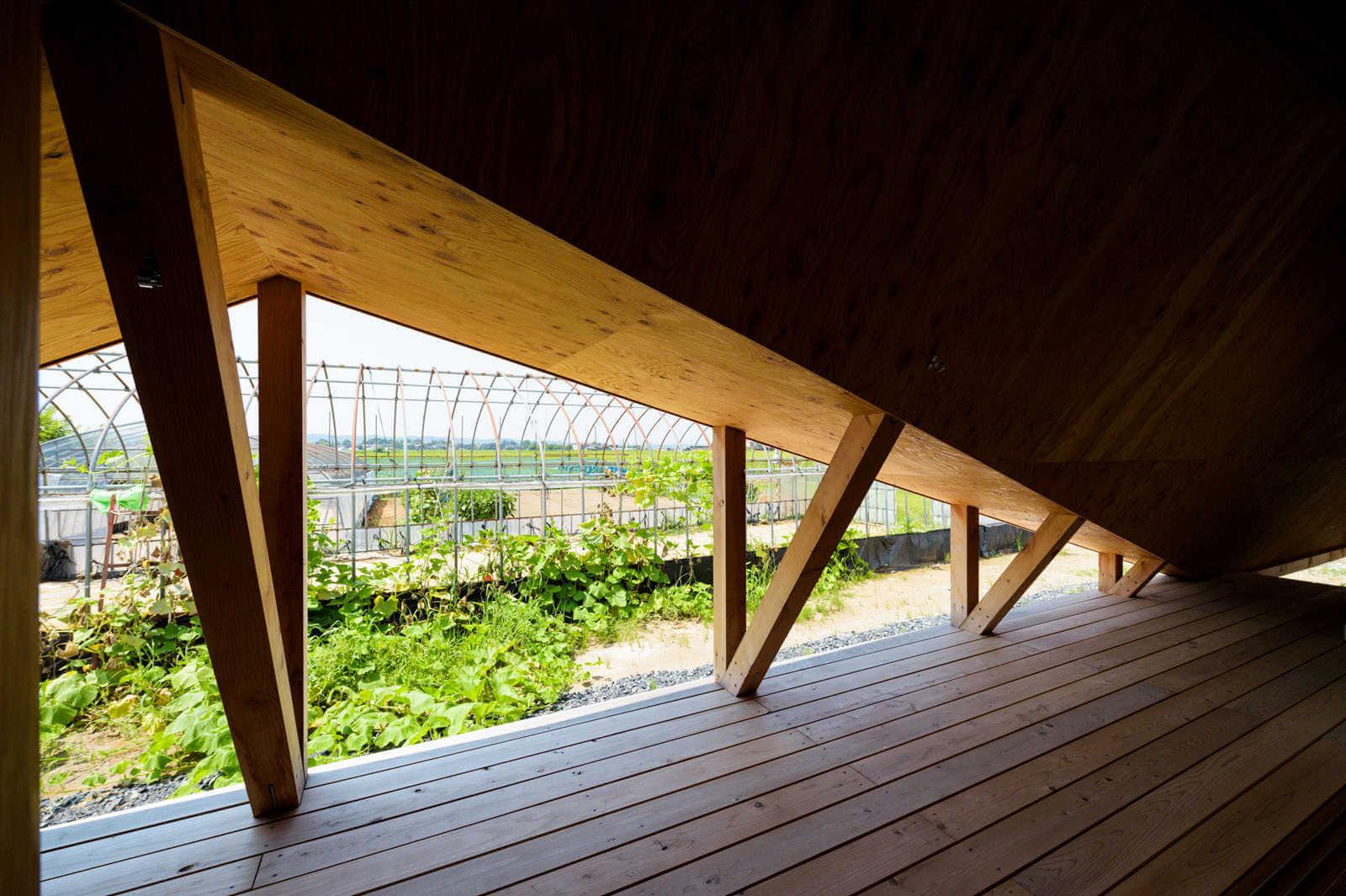 jardin de casa minimalista