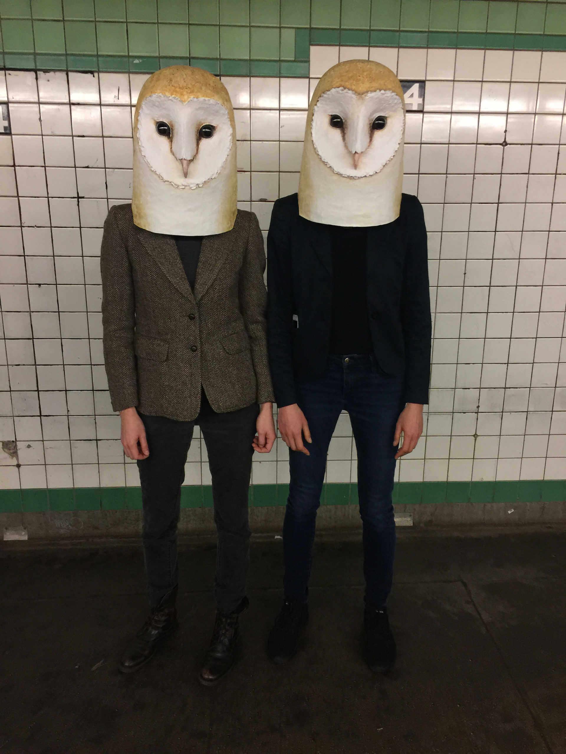 mascara de papel de buhos por Liz Sexton