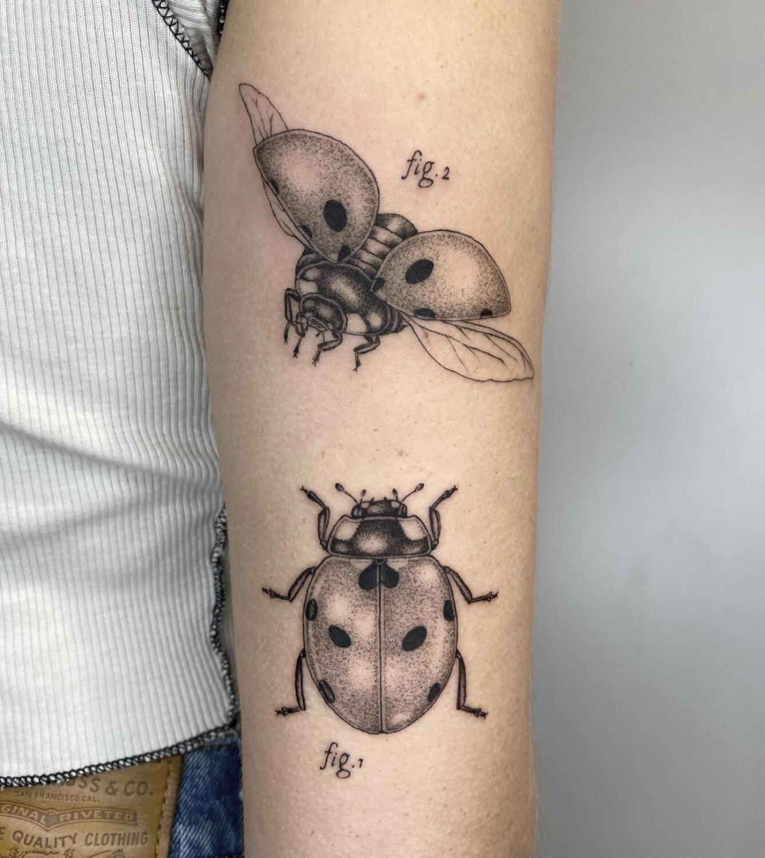 tattoo volpi petaquita