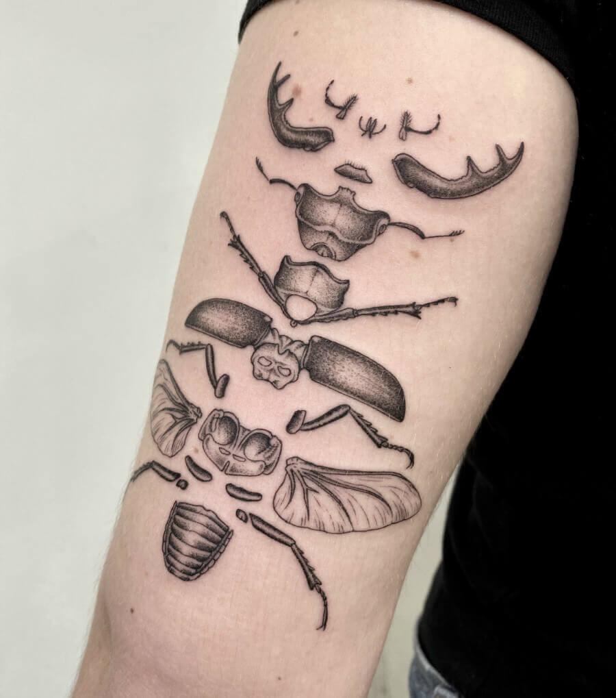 volpi tatuaje ciencia