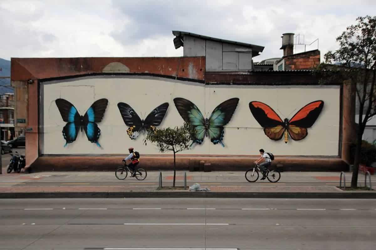 coleccion de mariposas mantra arte callejero