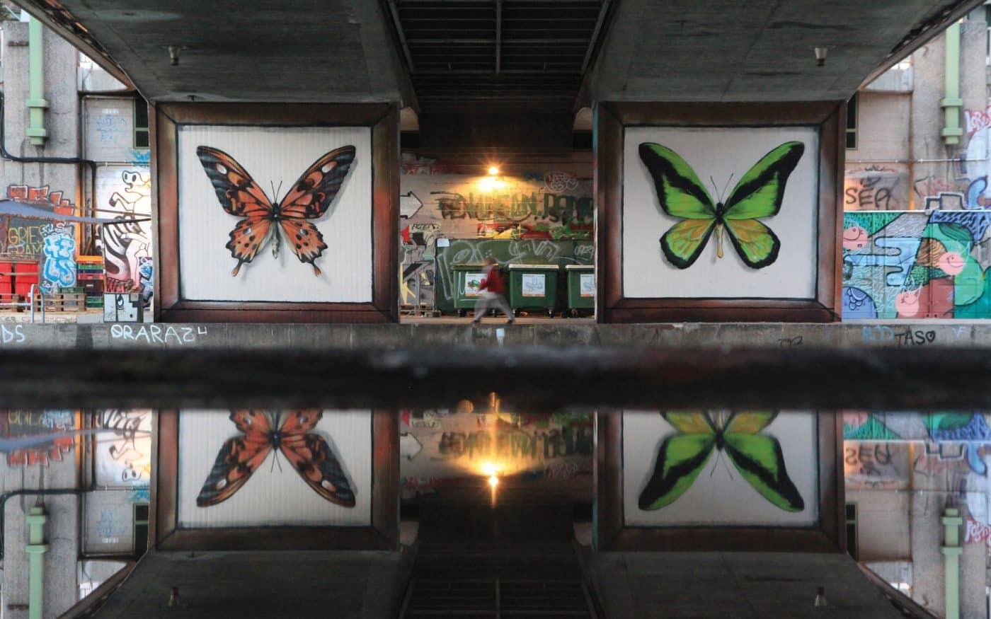 coleccion de mariposas mantra artista