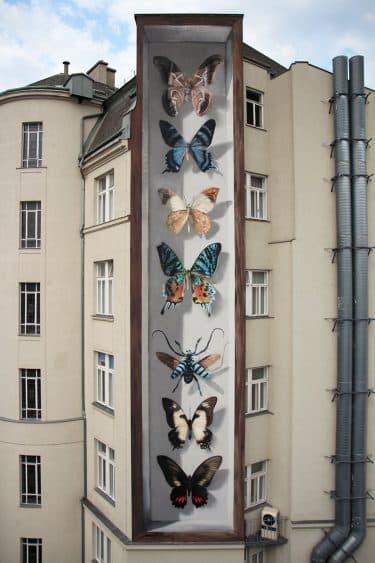 coleccion de mariposas mantra ilusionismo