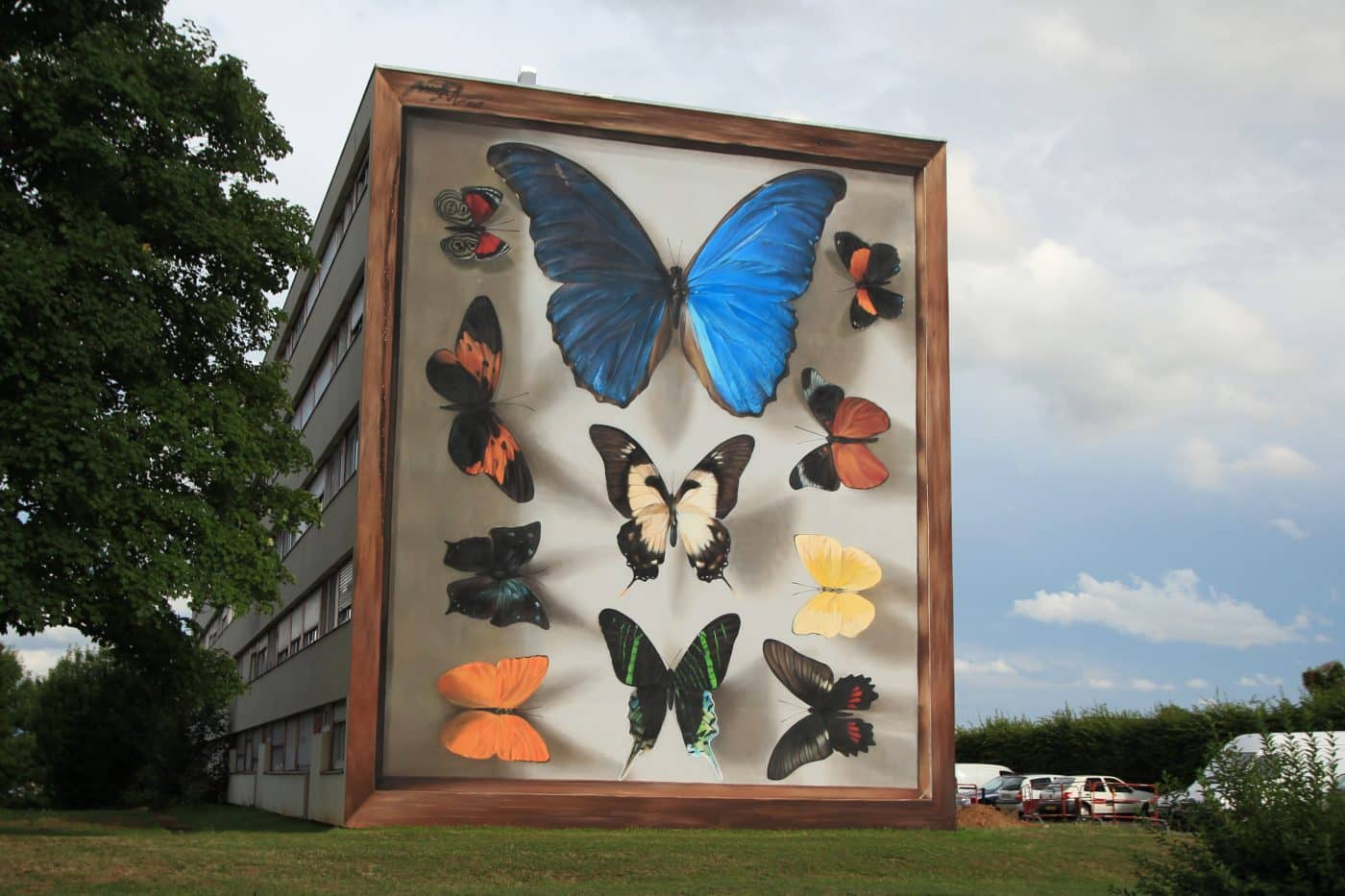 coleccion de mariposas mantra street art