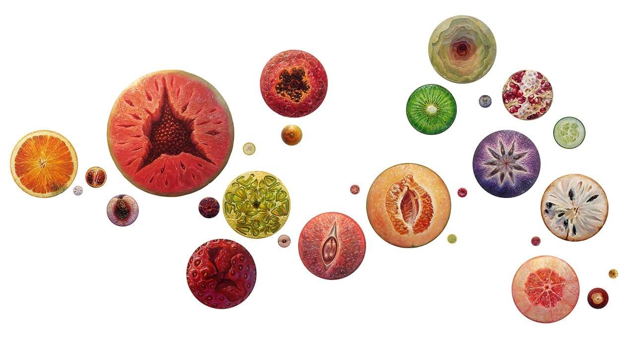 fruts portrait alonsa guevara