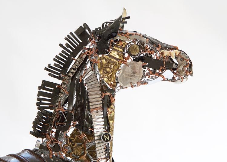 cabeza de caballo recoldo barbara franc
