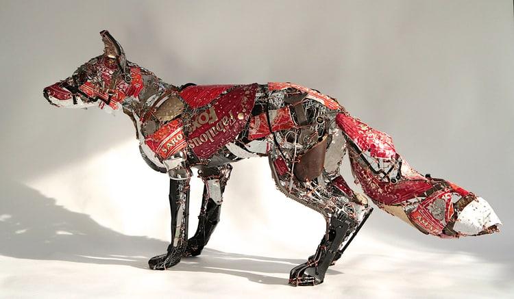 fox barbara franc