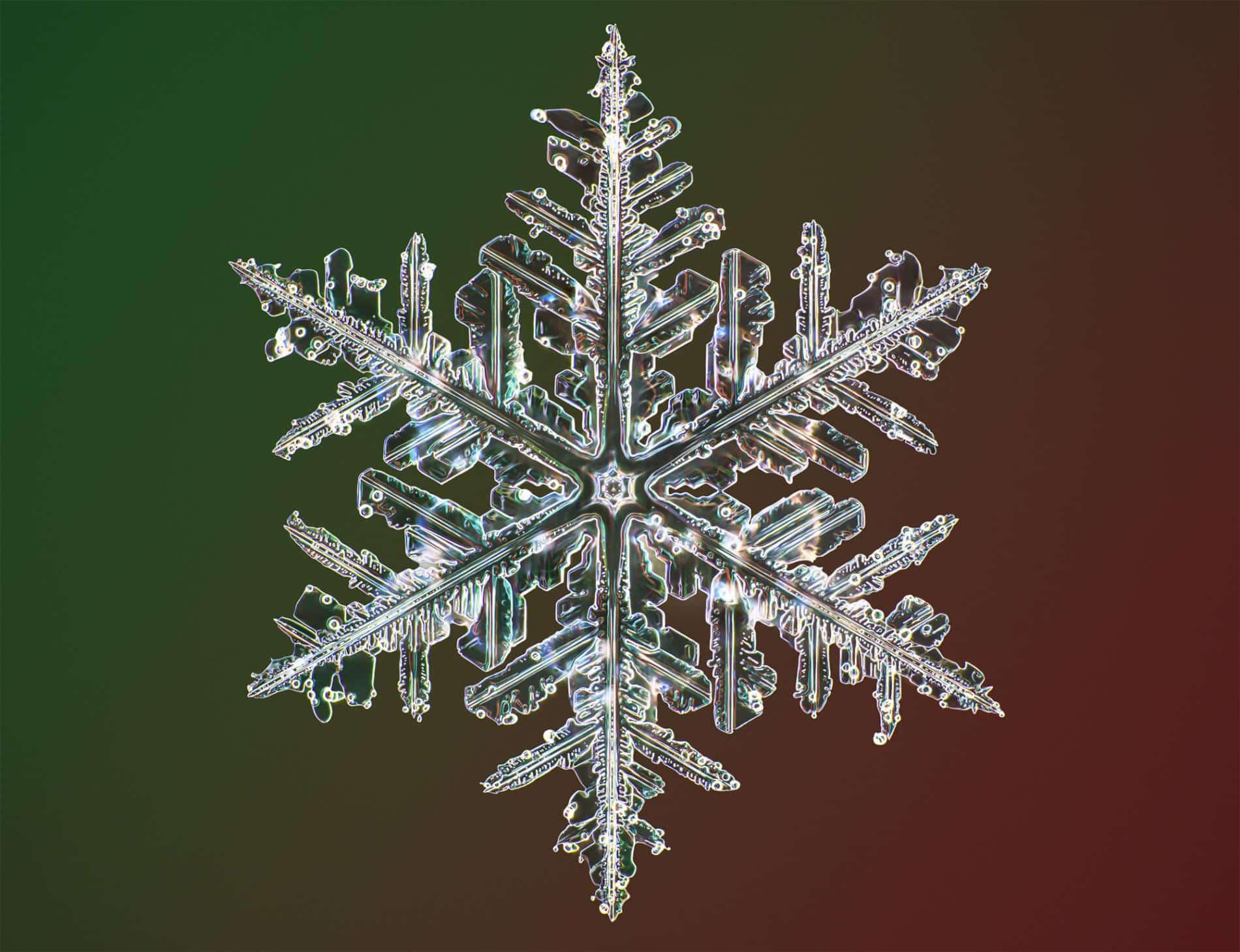 copo de nieve por microscopico
