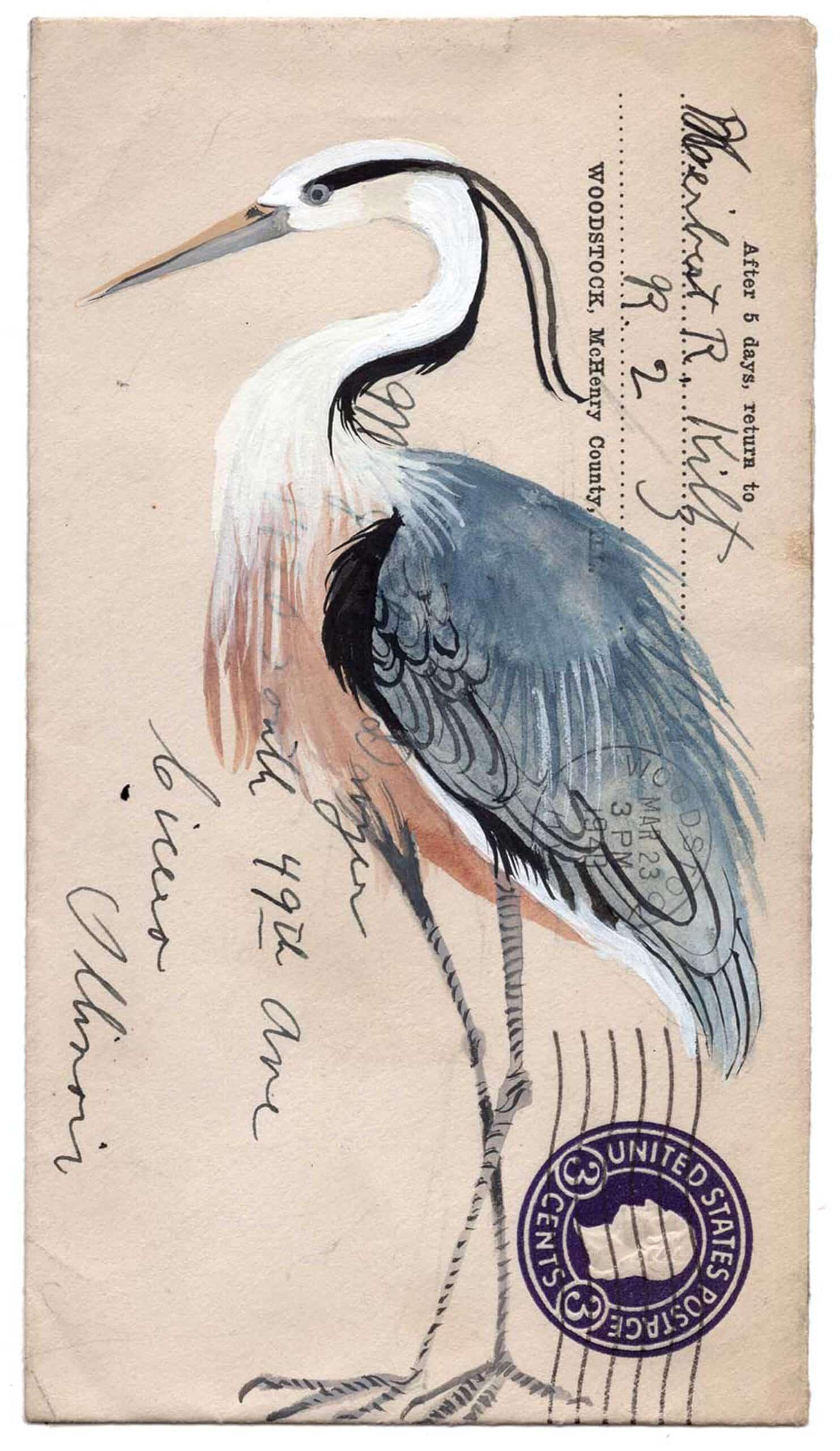 postales animales diana sudyka ave