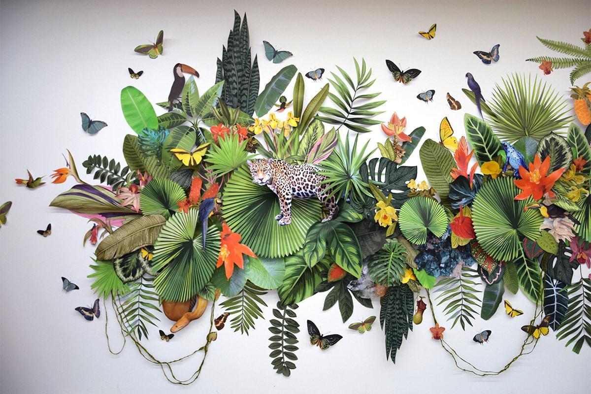 biodiversidad clare boersch selva