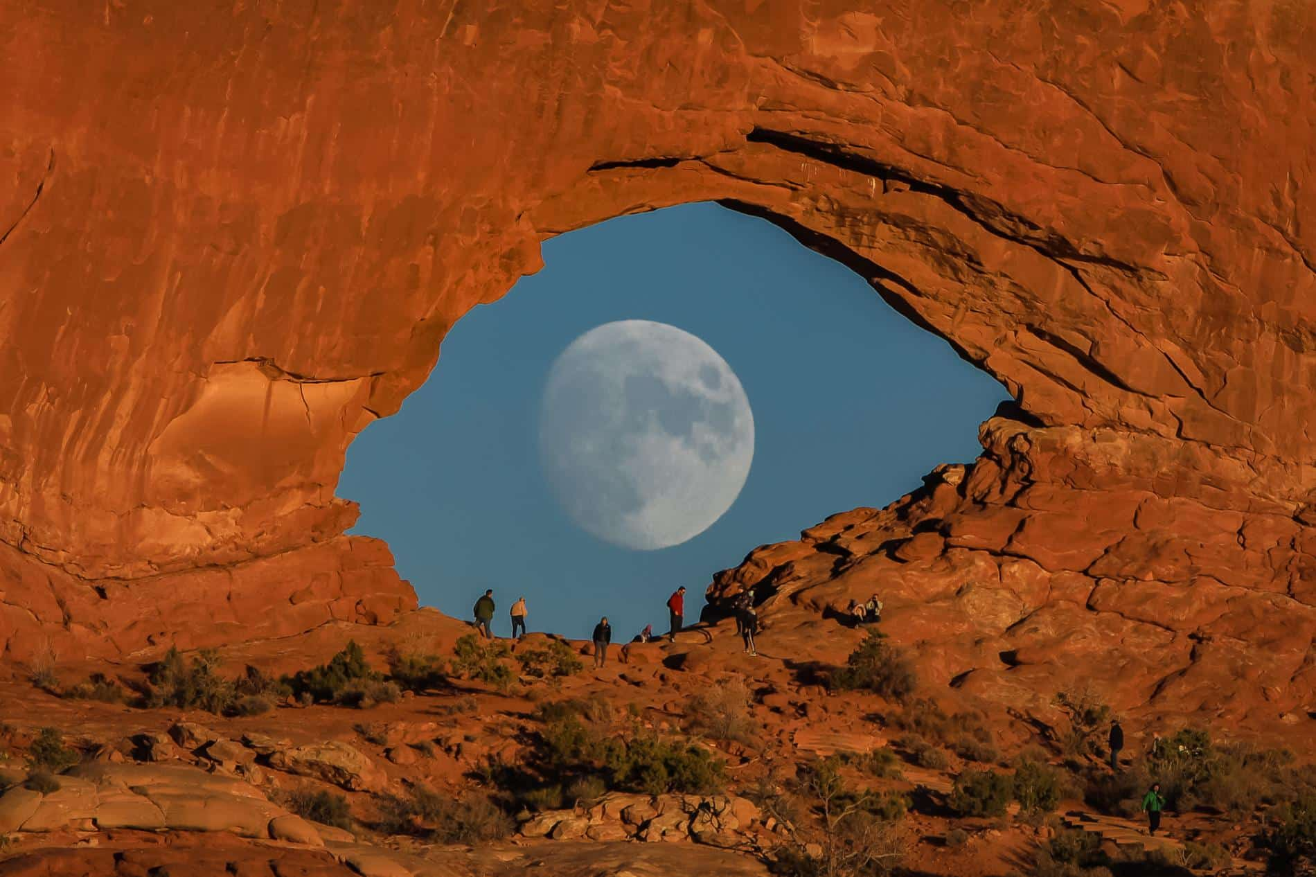 cooley luna de ojo