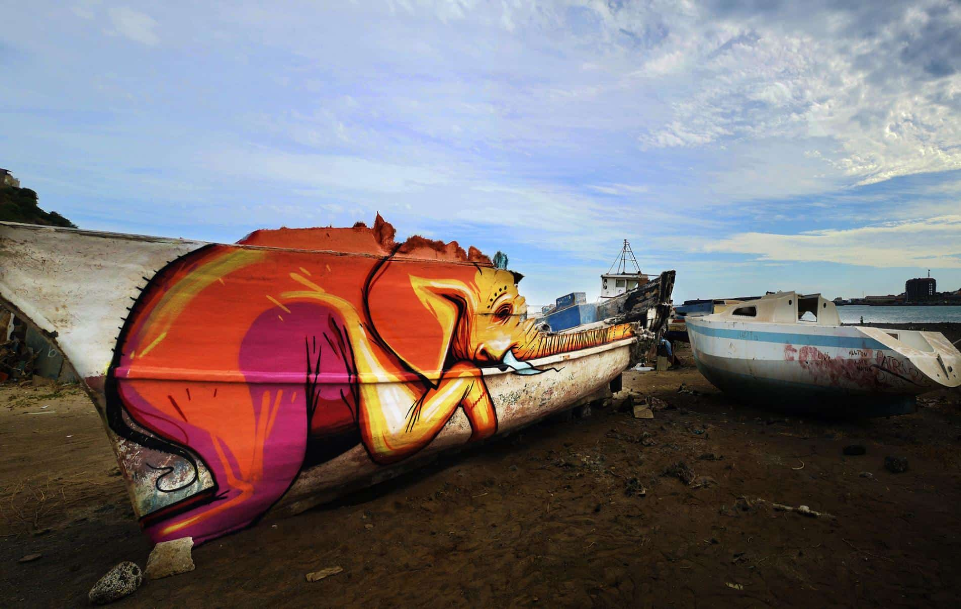 falko one elefantes sudafrica barca