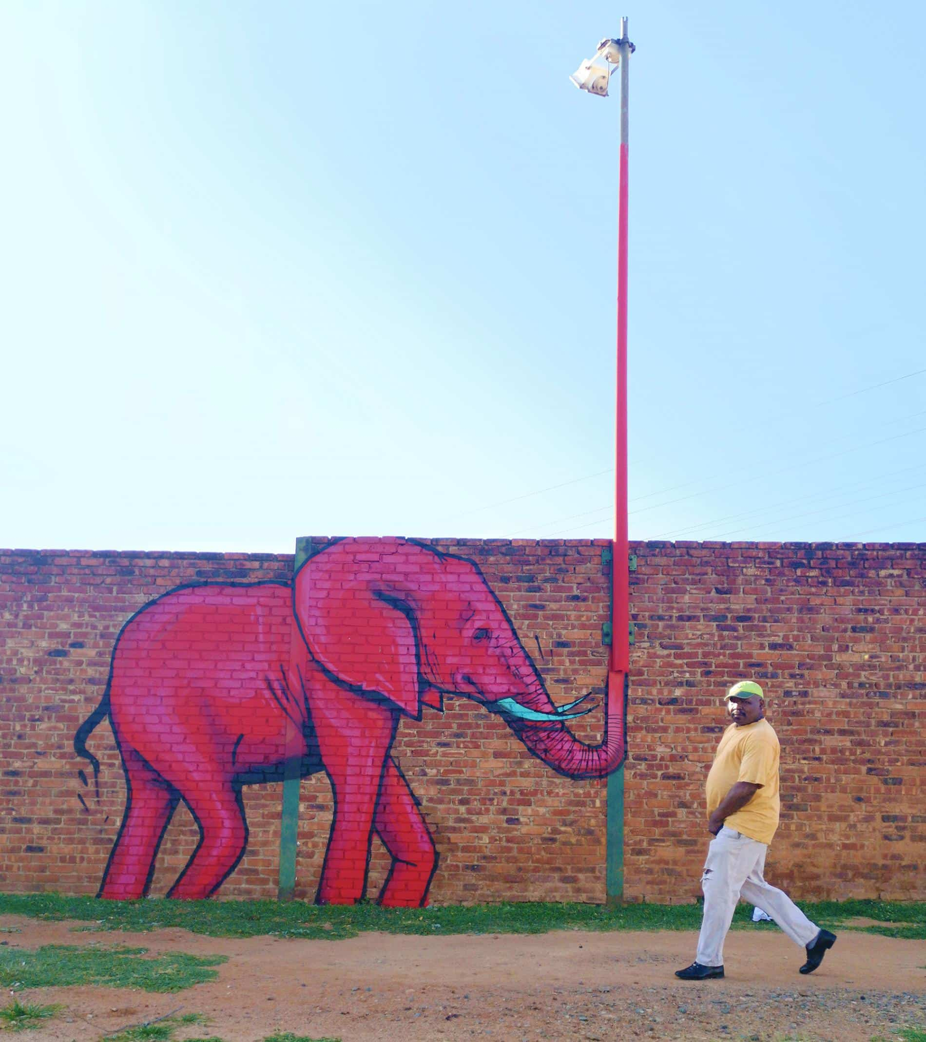 falko one elefantes sudafrica poste