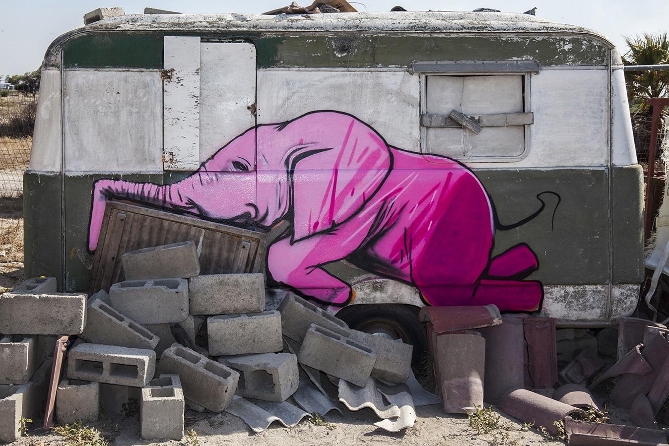 falko one elefantes sudafrica ruinas