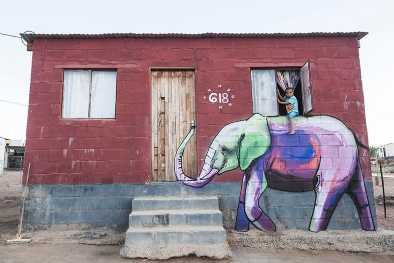 falko one elefantes sudafrica