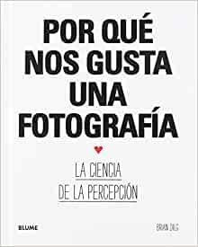 Por qué nos gusta una fotografía: La ciencia de la percepción (Spanish Edition)