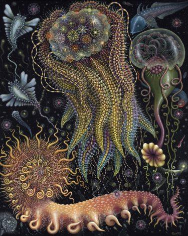 Robert Steven Connett mico universos