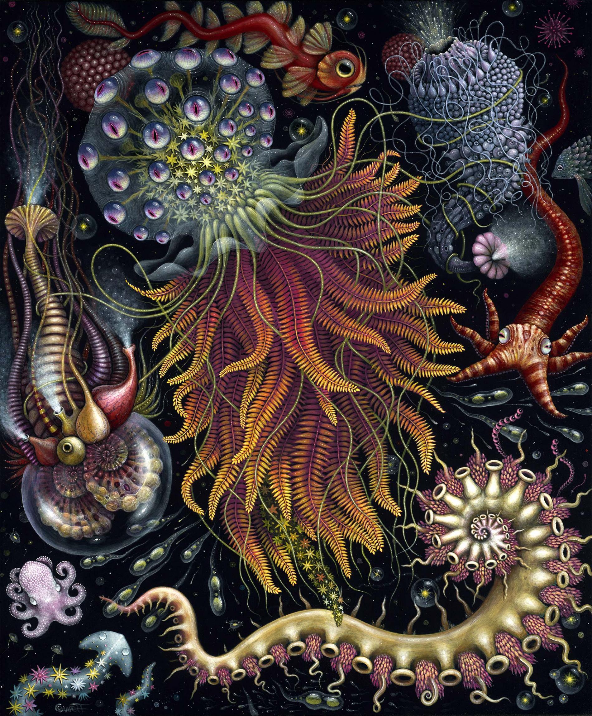 Robert Steven Connett mico universos Hydroza