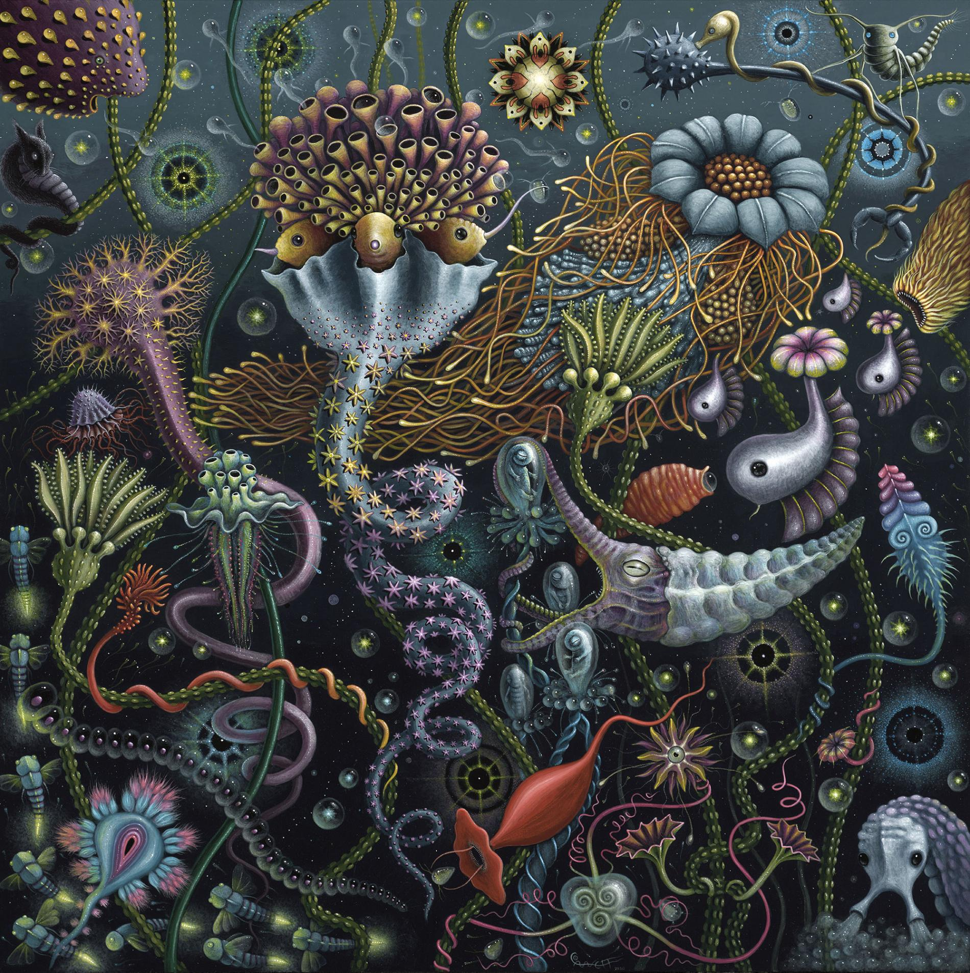 Robert Steven Connett mico universos Space Plankton 2