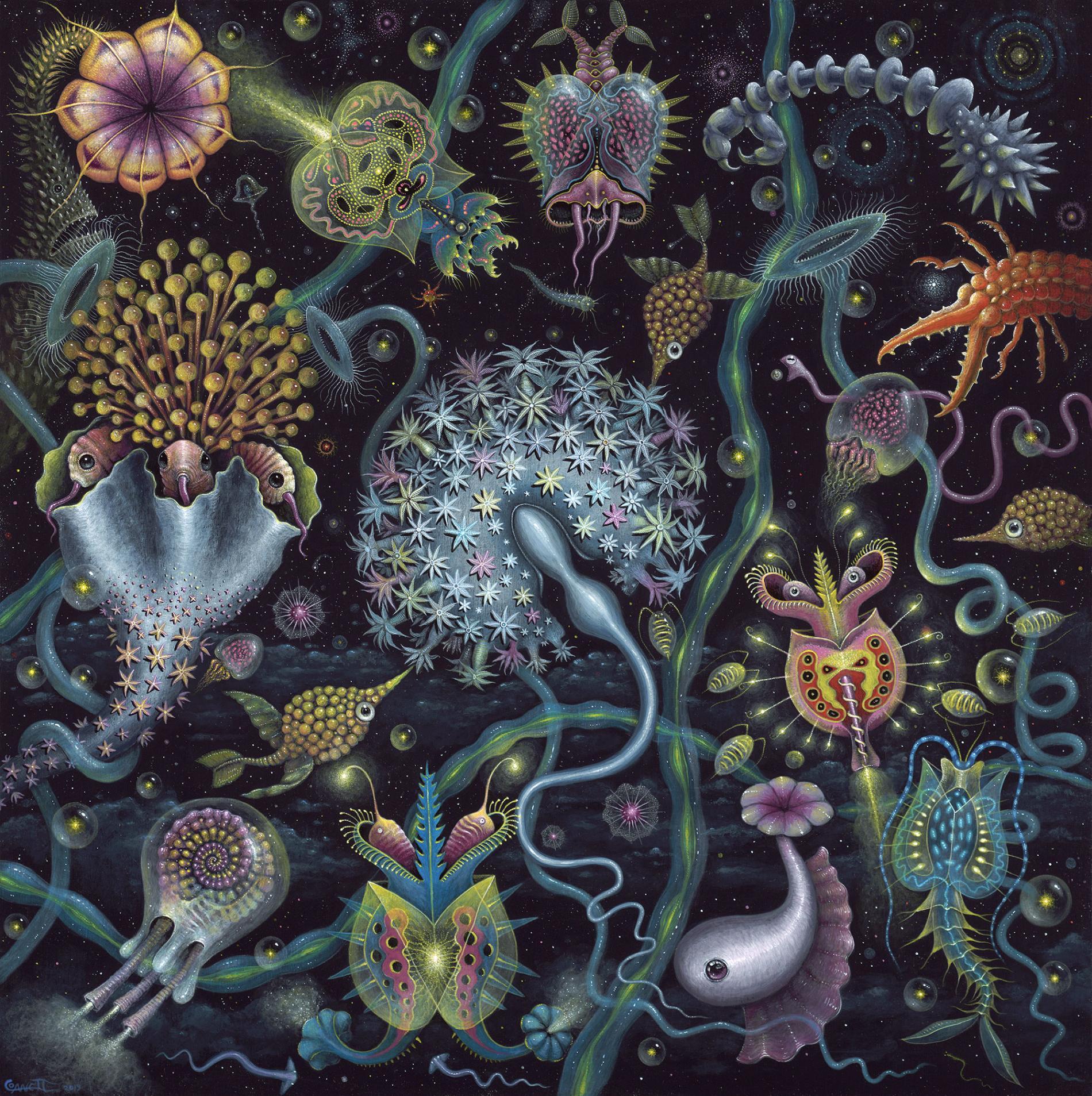 Robert Steven Connett mico universos Space Plankton