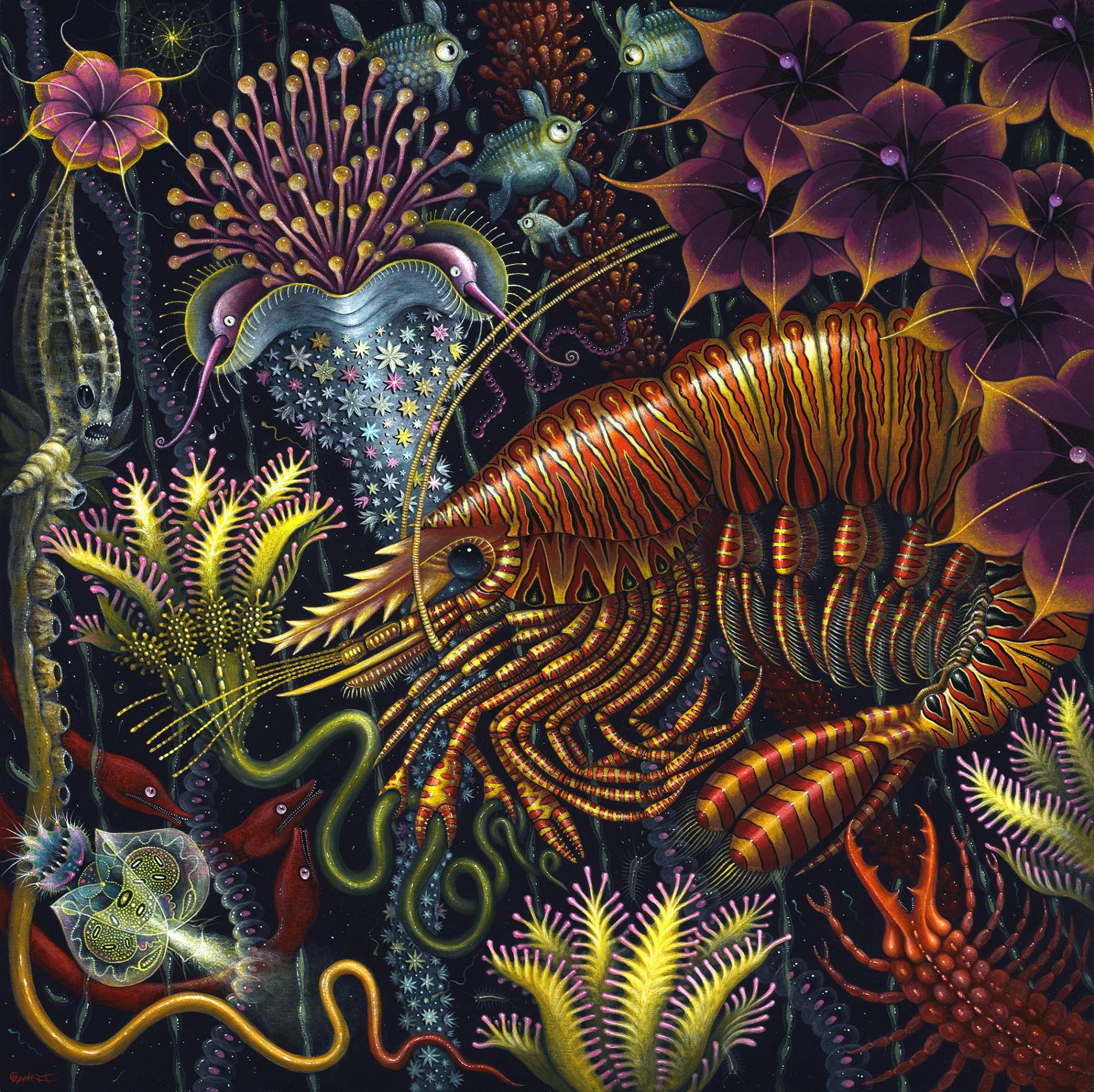 Robert Steven Connett mico universos flower Mimic