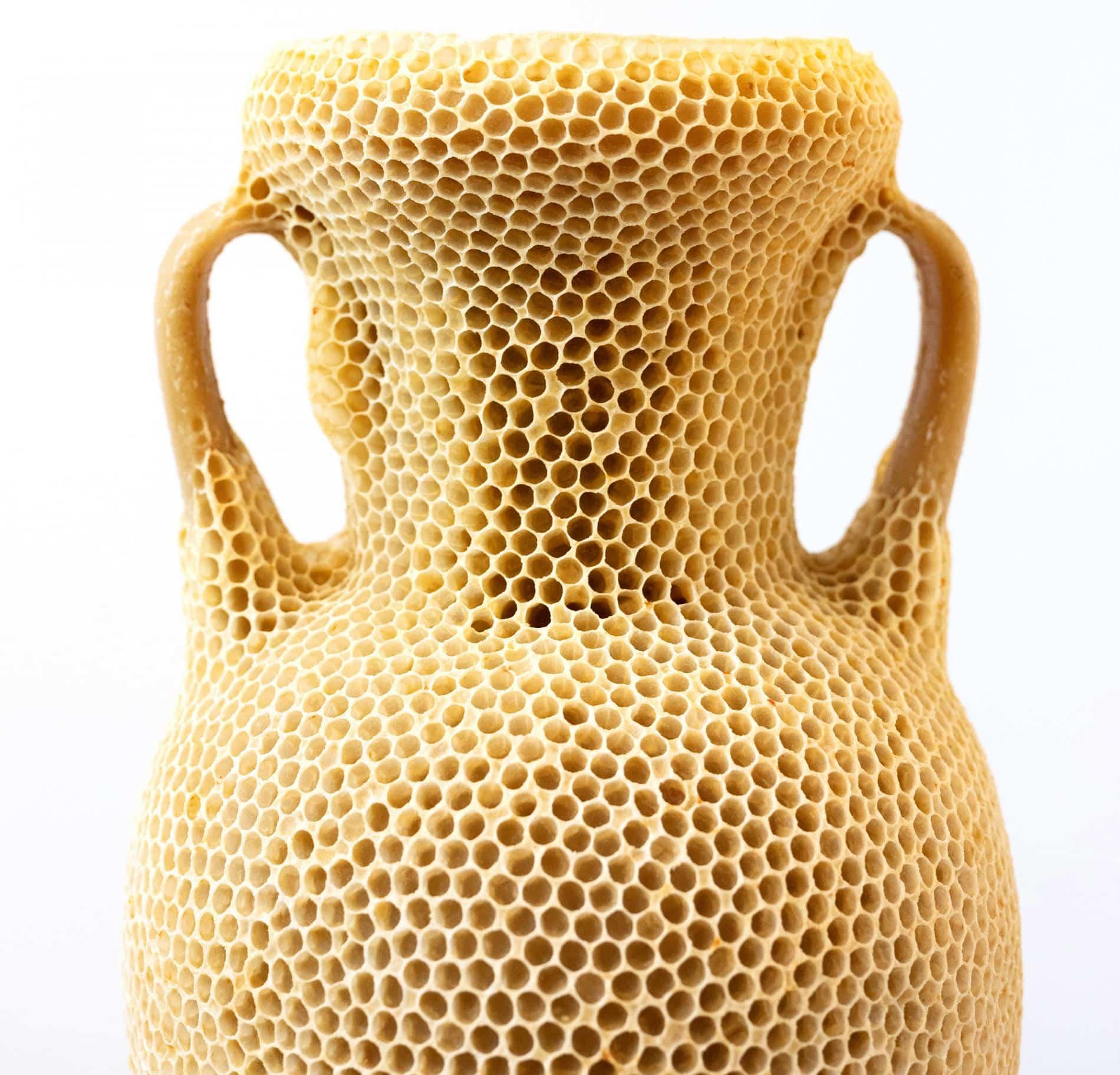 The Honeycomb Amphora tomas libertini
