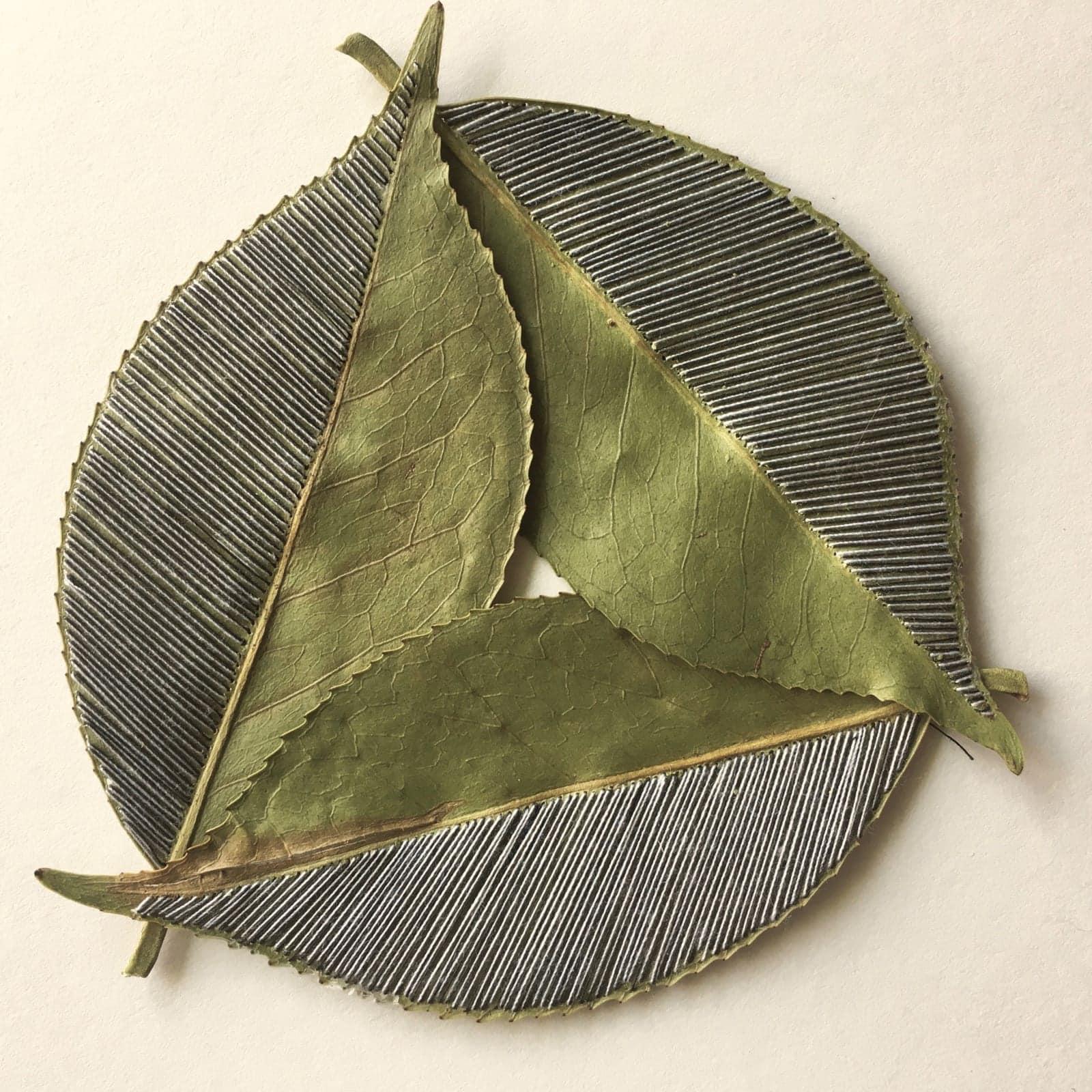 hillary bordado botanico hojas conexion