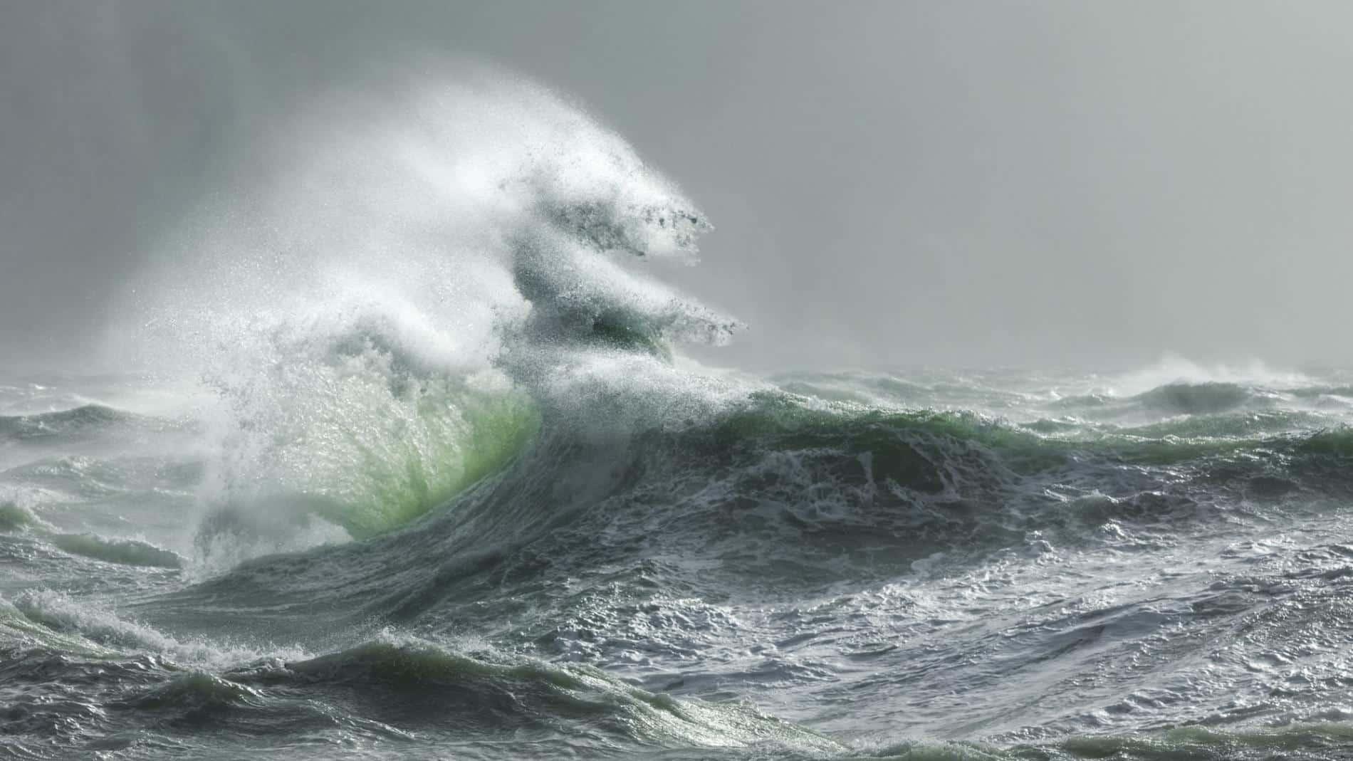 talibart tormentas y mareas makara