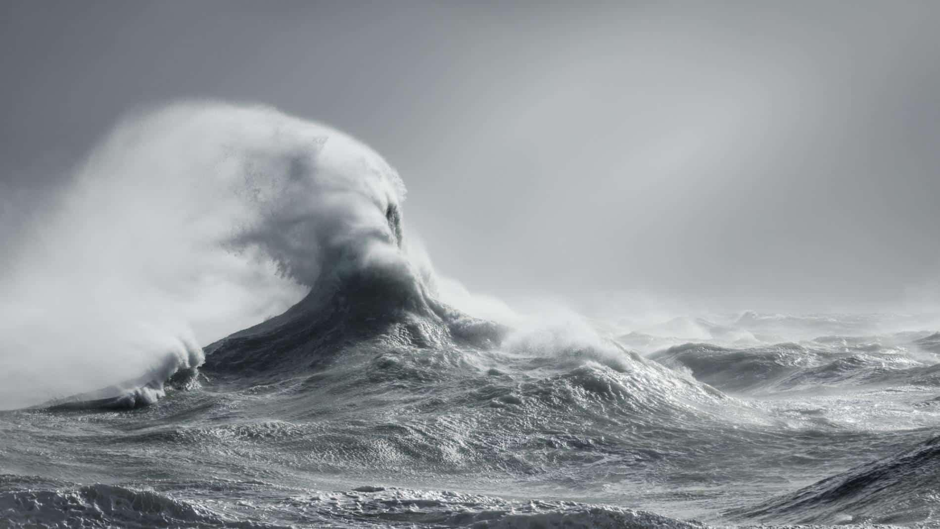 talibart tormentas y mareas olas