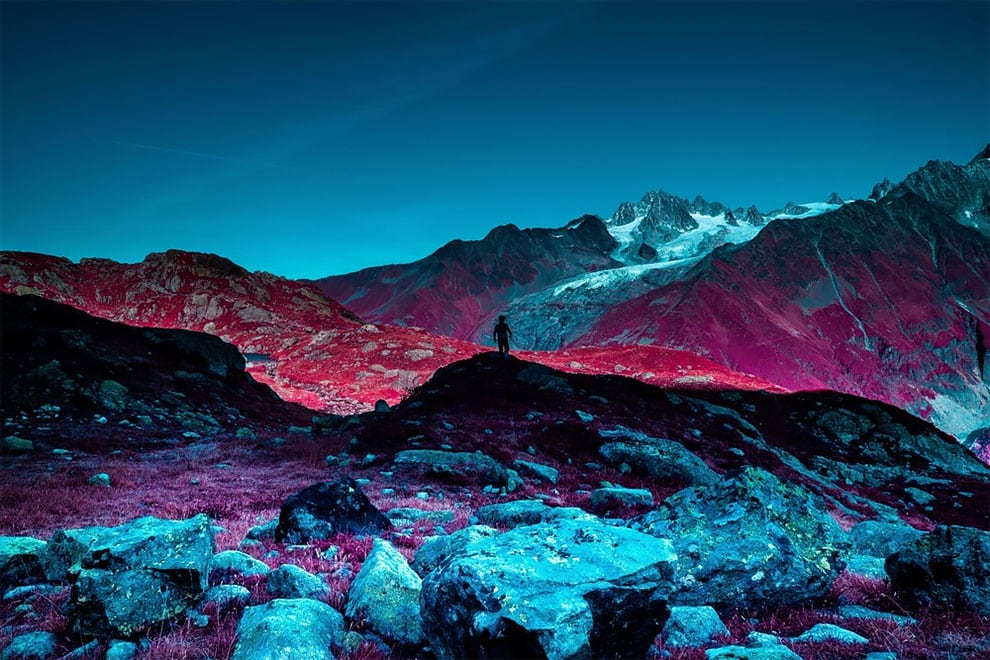 Life on Mars, in the infrared chrome category. (Photo by Katie Farr