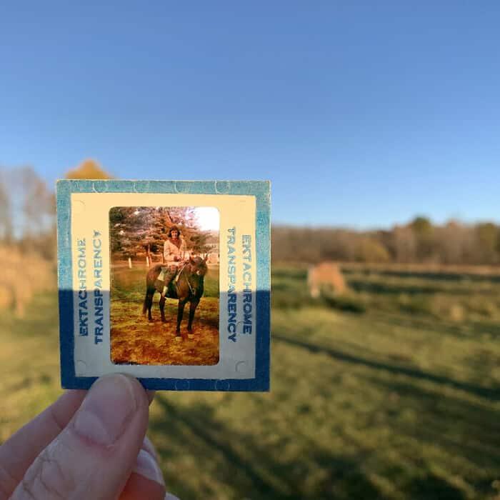 catherine panebiancco fotografia nostalgia caballo