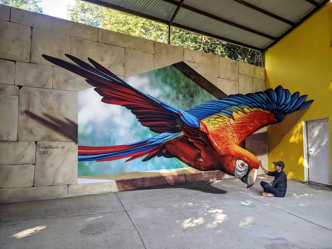 papagayo arte anamorfico carlos alberto gh