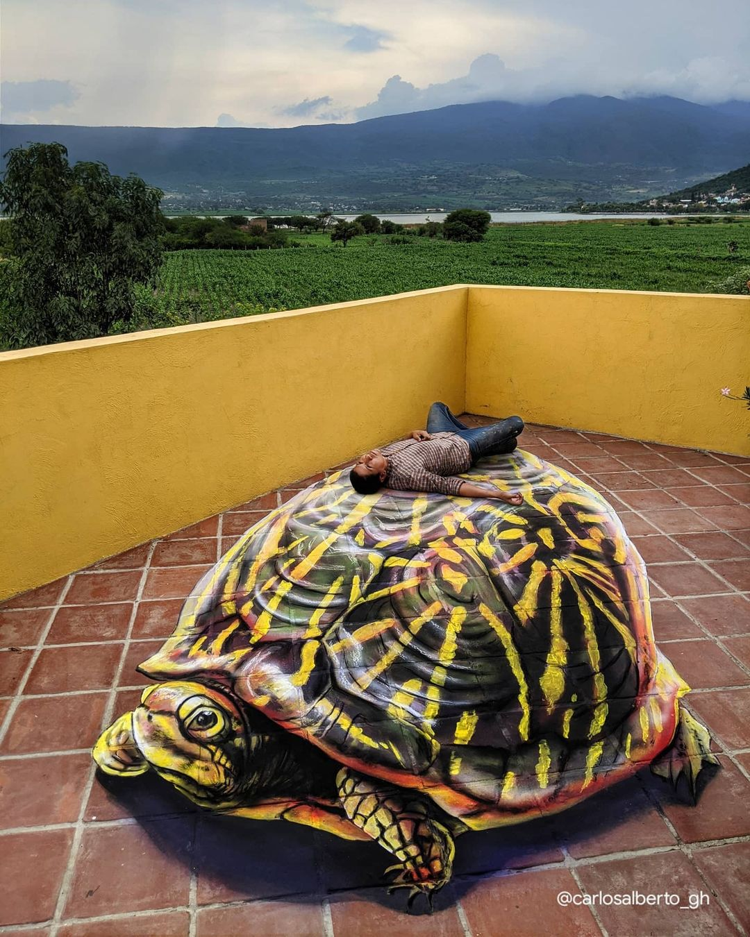 tortuga arte anamorfico carlos alberto gh