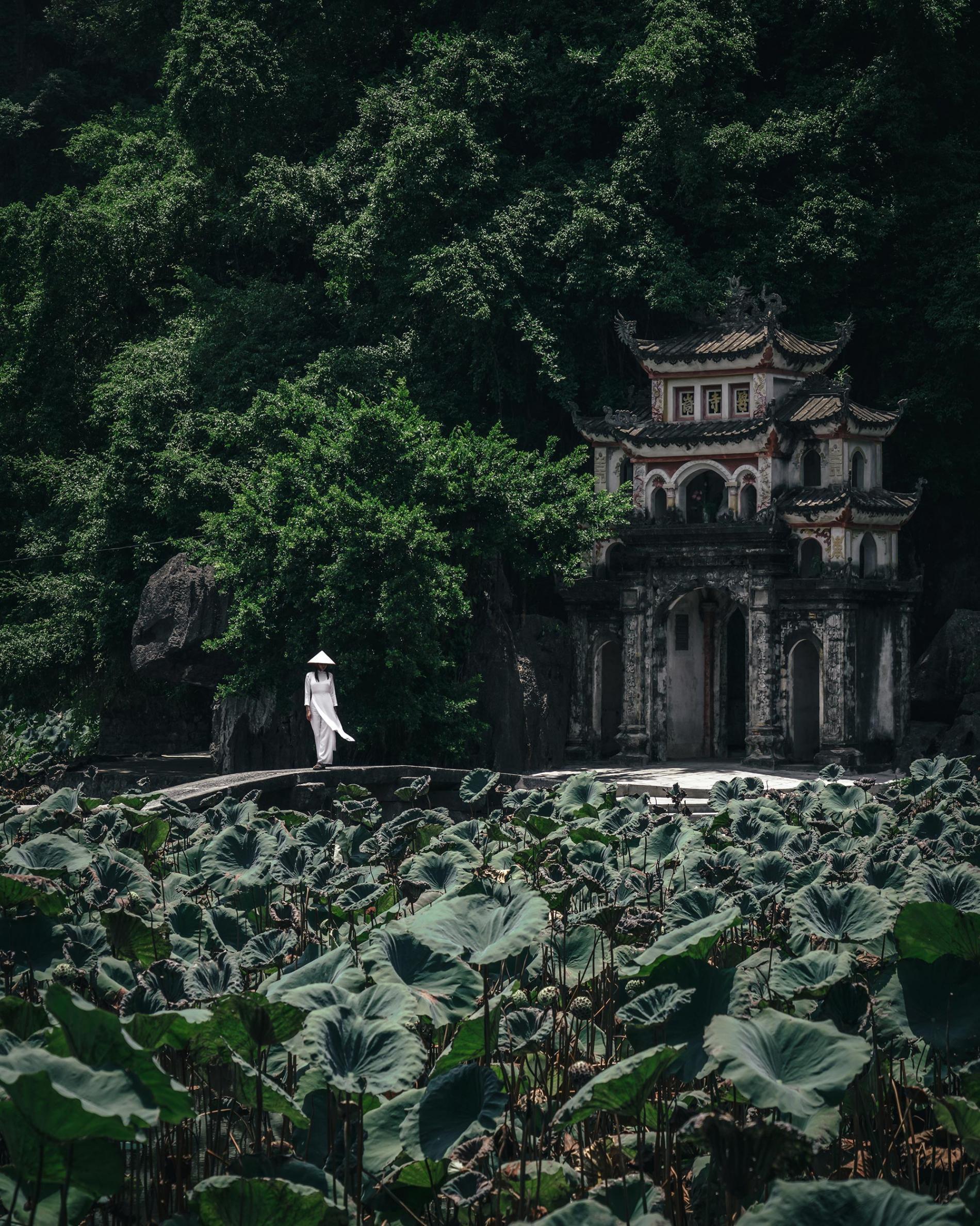 La belleza de la fotografía cotidiana de Asia por RK | Fotografía