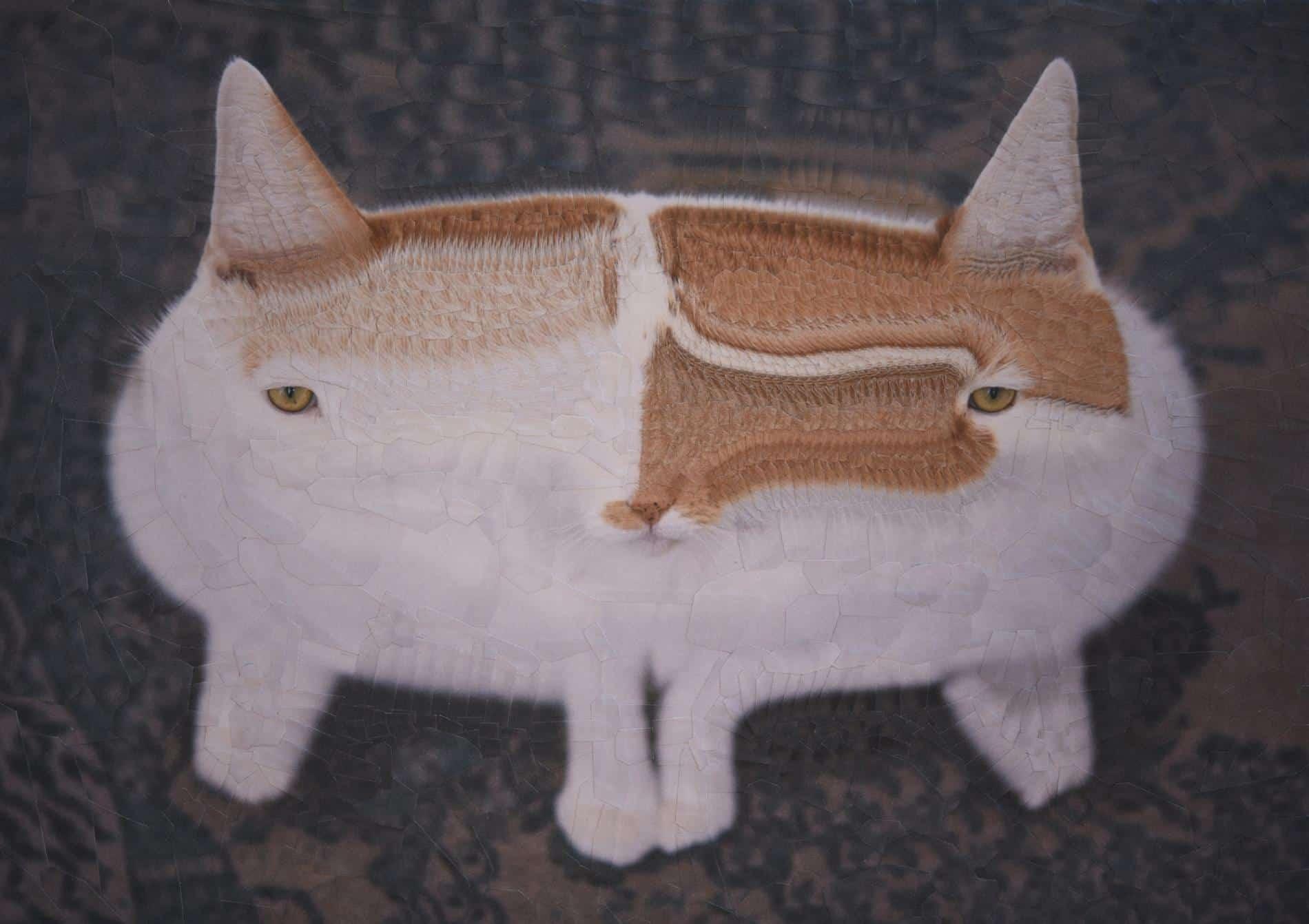 lola dupre gato dobñecollage 2