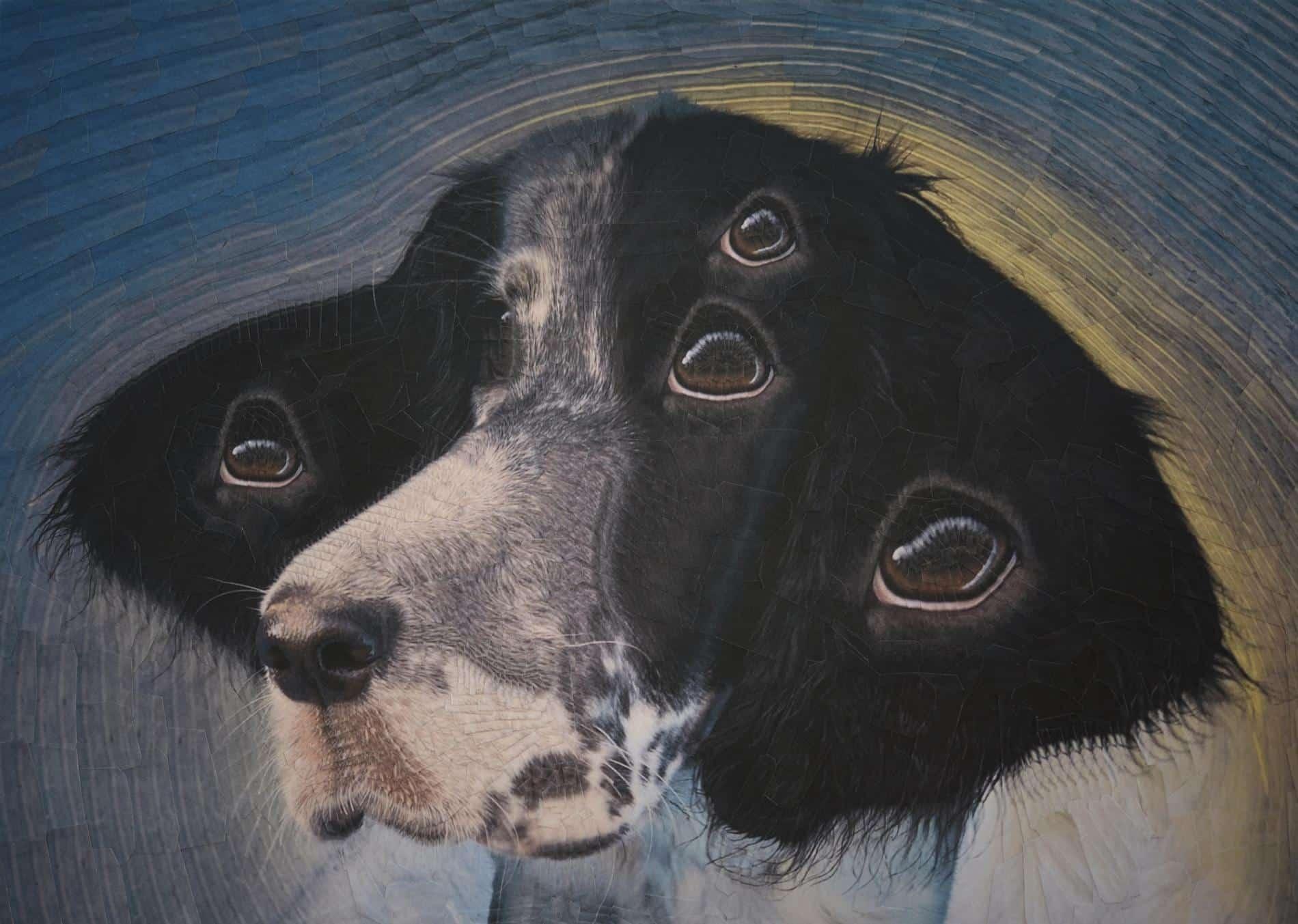 lola dupre perro collage 2