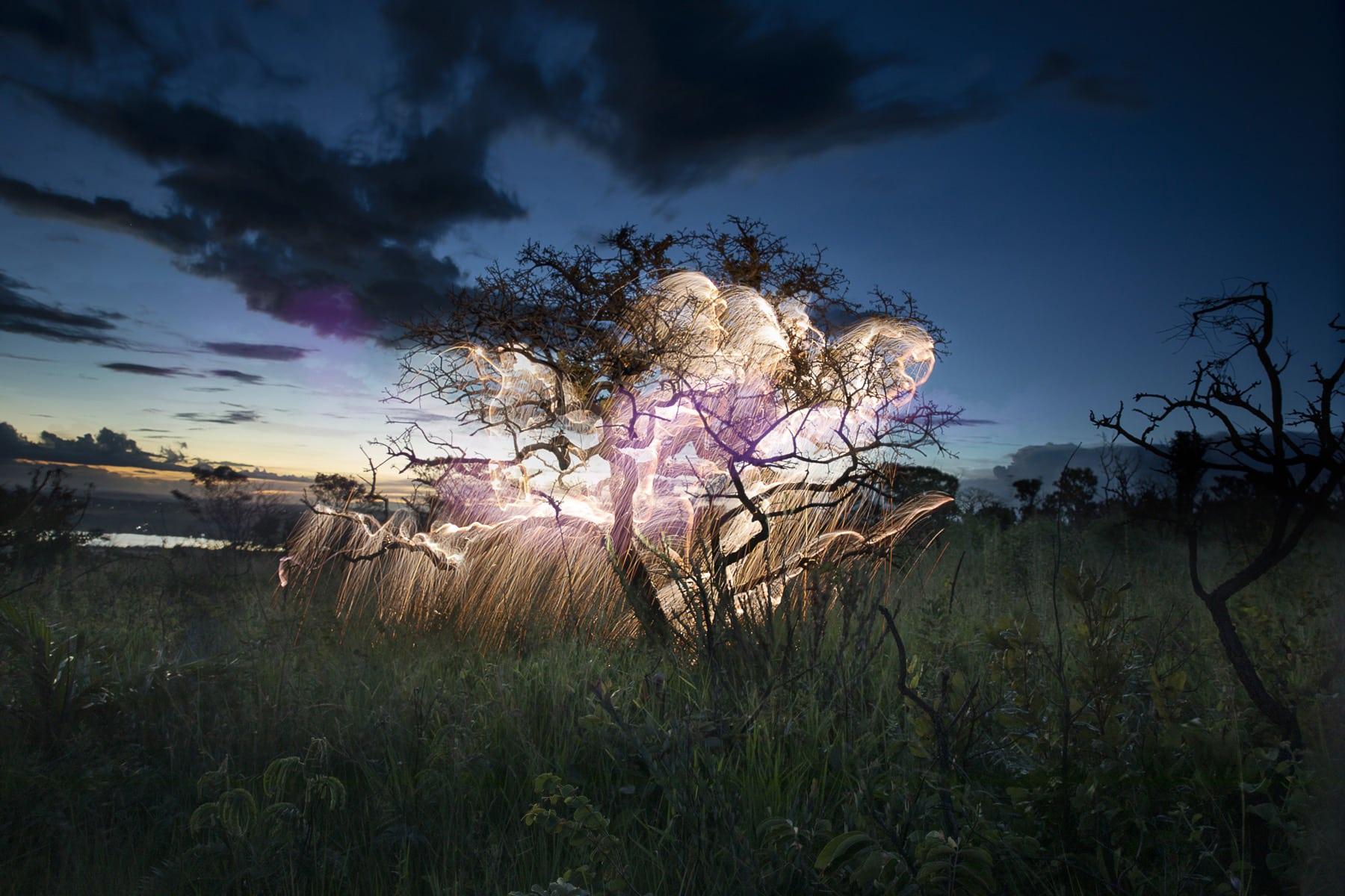 rayos de luz fotografiavitor schietti luzz