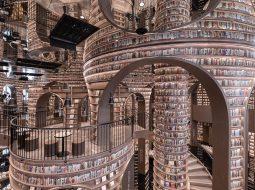 mc libreria 2 escher