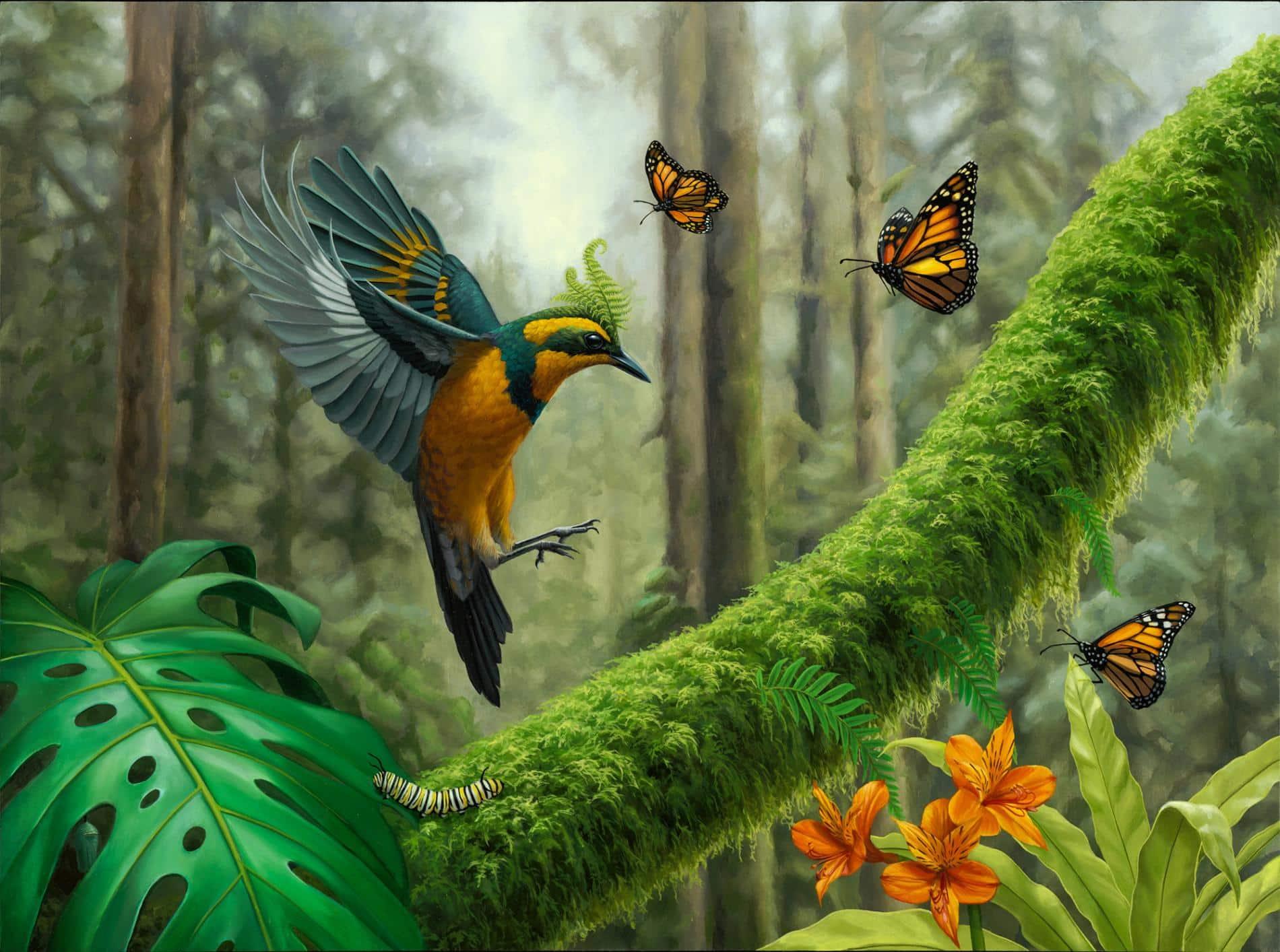 3. ching colibri