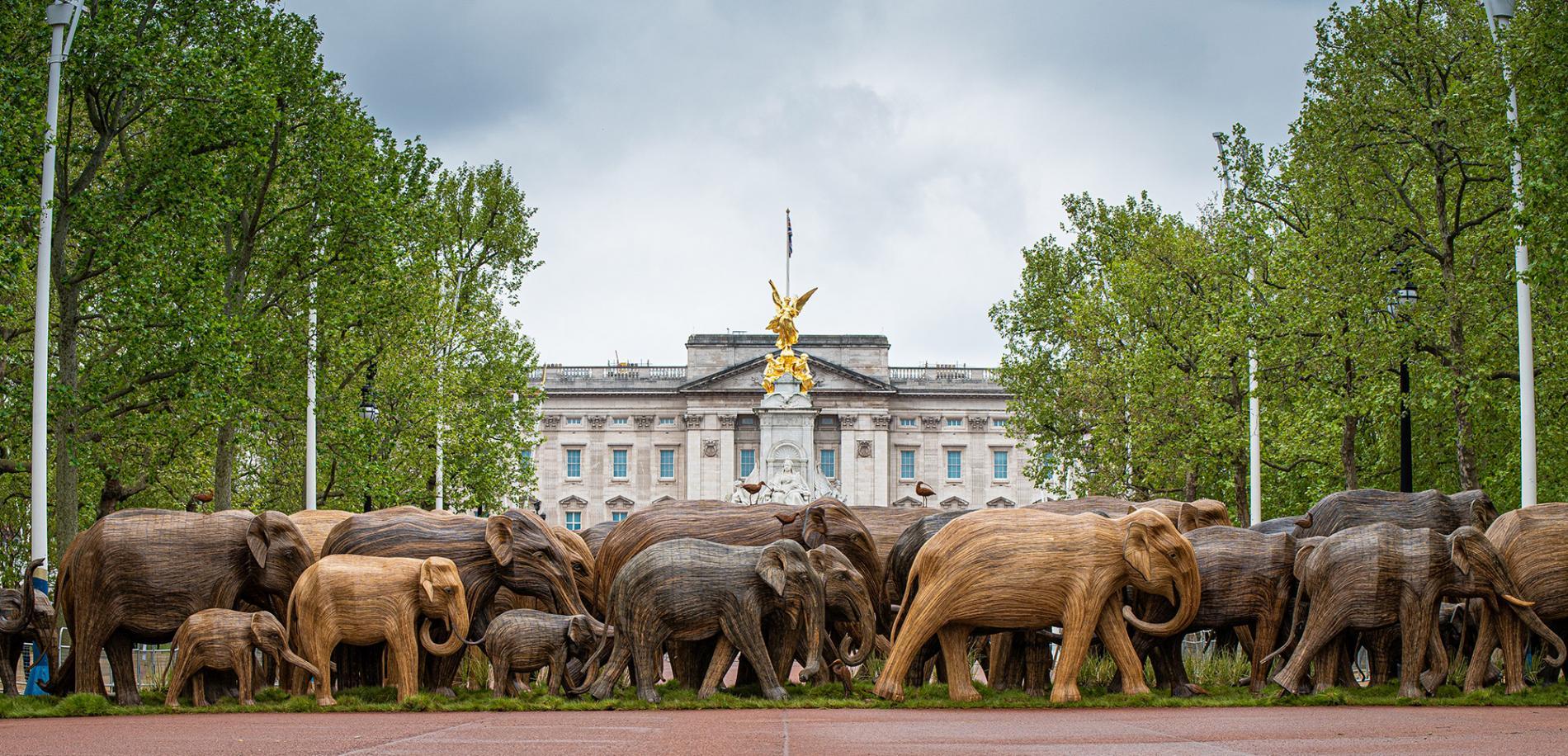 elephant escultura manada medio ambiente