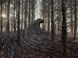 olas de madera fotografia Jörg Gläscher
