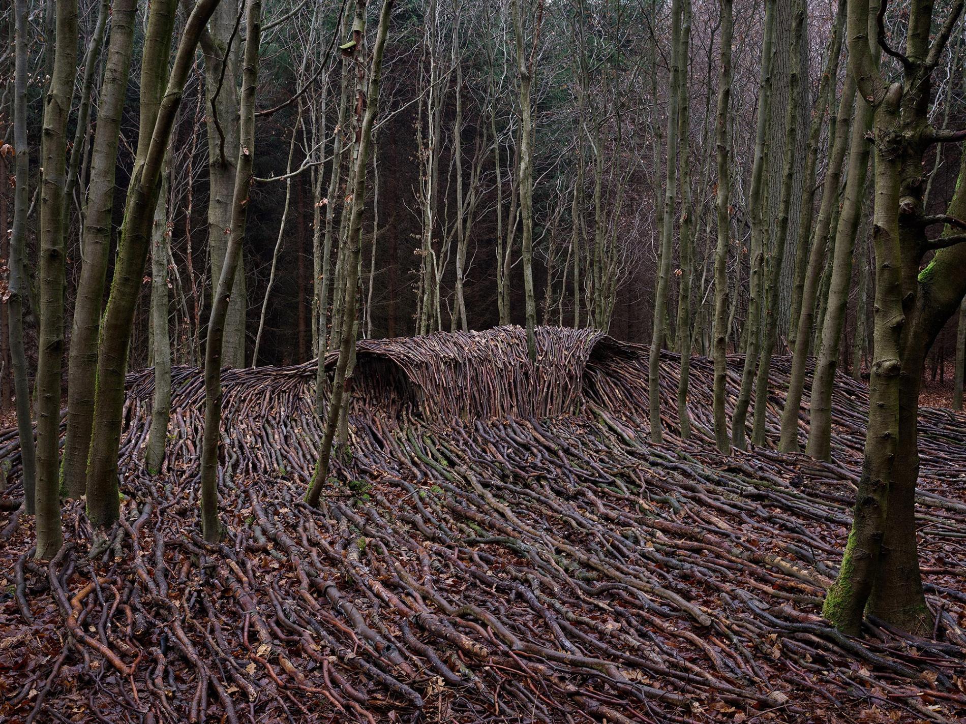 olas de madera fotografia Jörg Gläscher cerrona