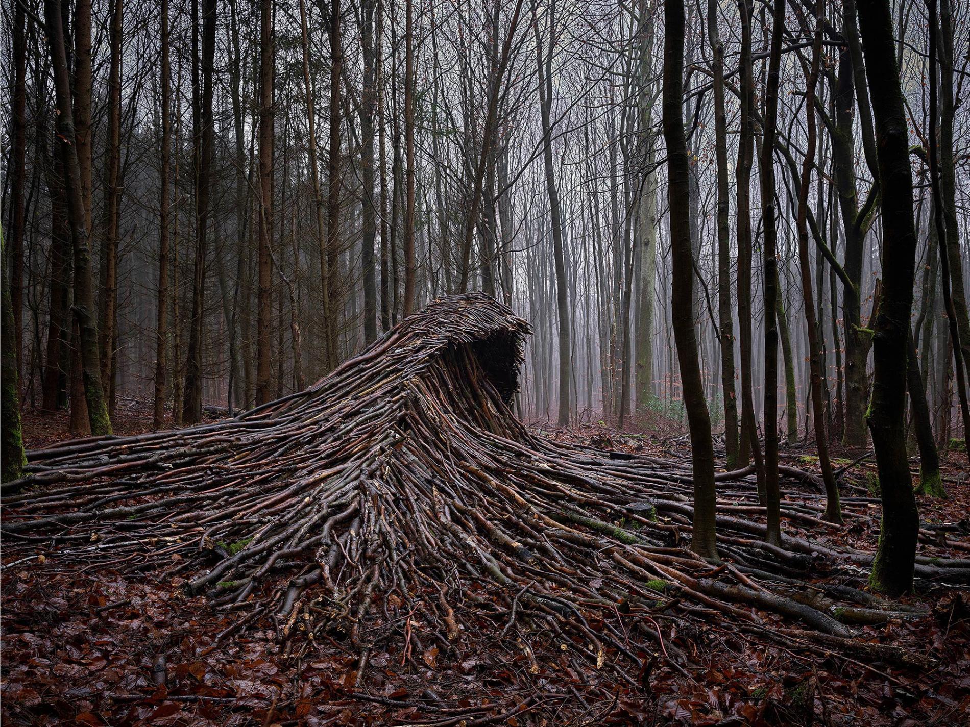 olas de madera fotografia Jörg Gläscher mitad
