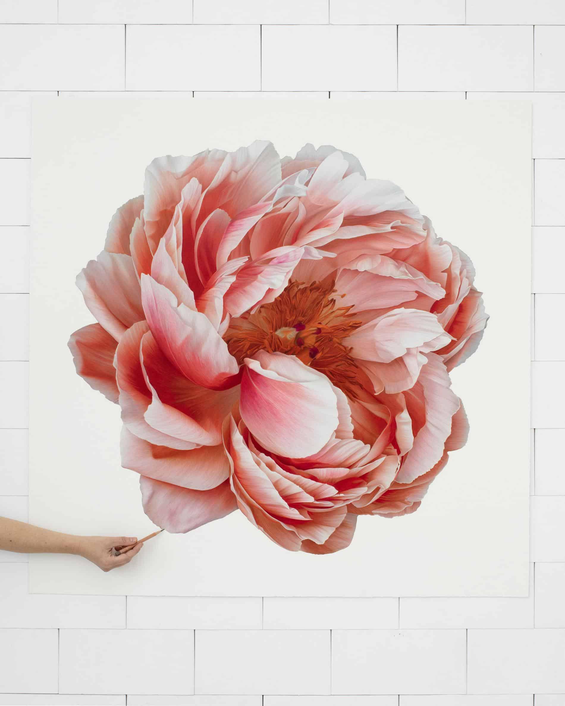 hendry flor bloom